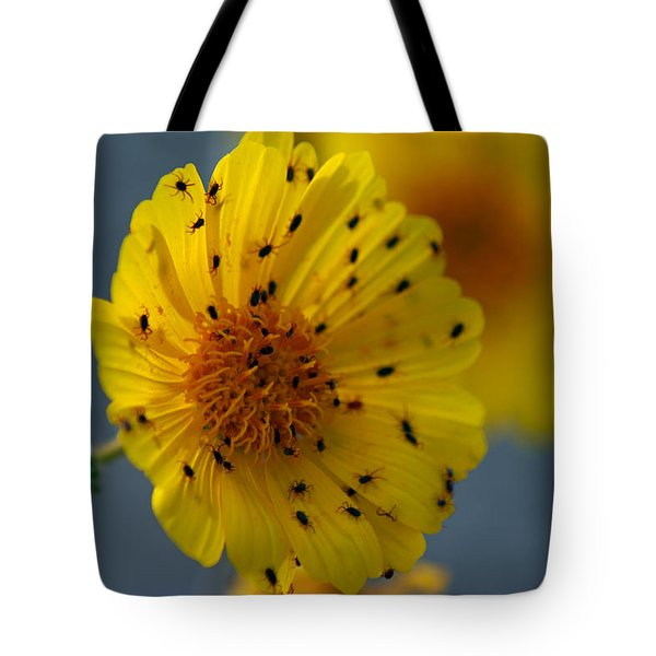 Death Valley Superbloom 102 Tote Bag