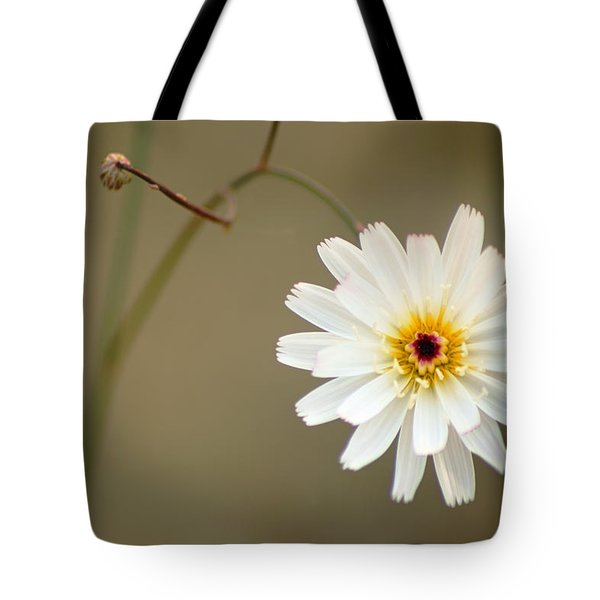 Death Valley Superbloom 104 Tote Bag by Daniel Woodrum