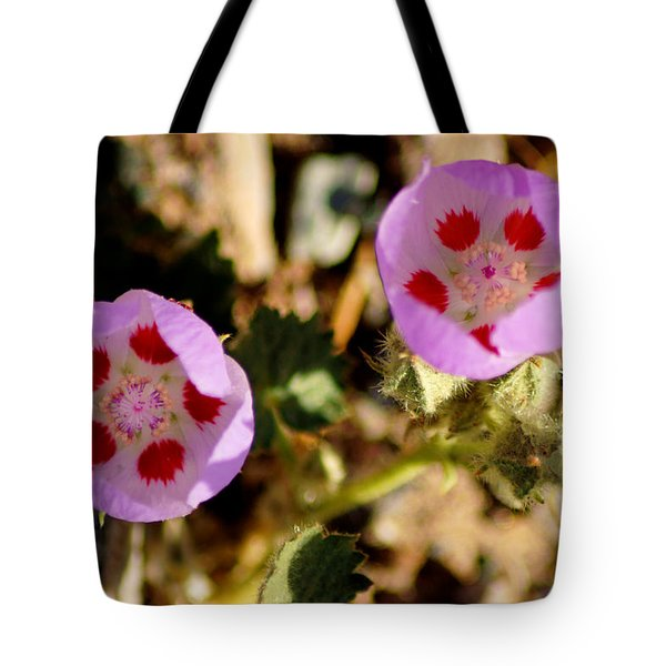 Death Valley Superbloom 105 Tote Bag by Daniel Woodrum