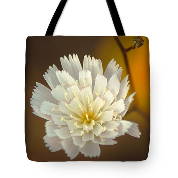 Death Valley Superbloom 203 Tote Bag