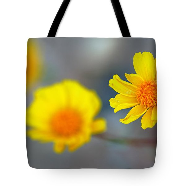 Death Valley Superbloom 204 Tote Bag by Daniel Woodrum