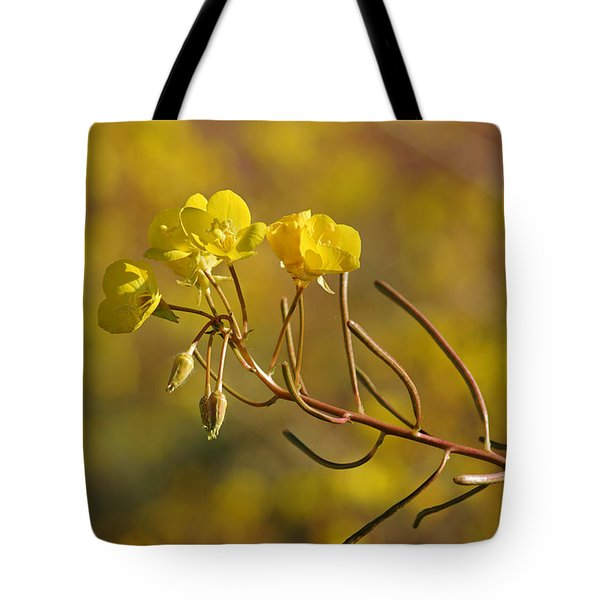Death Valley Superbloom 301 Tote Bag by Daniel Woodrum