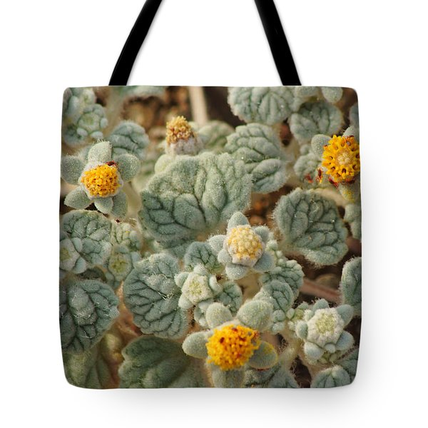 Death Valley Superbloom 302 Tote Bag by Daniel Woodrum