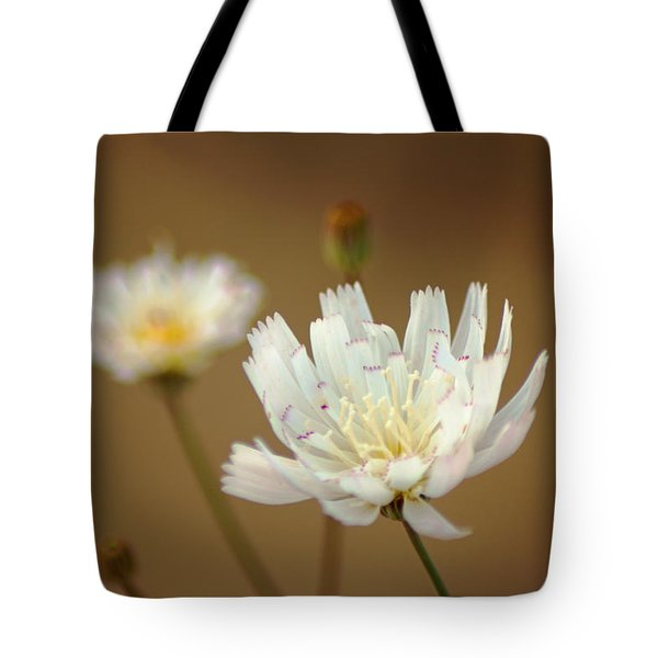 Death Valley Superbloom 303 Tote Bag