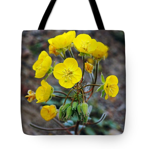 Death Valley Superbloom 306 Tote Bag