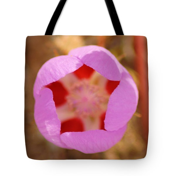 Death Valley Superbloom 402 Tote Bag
