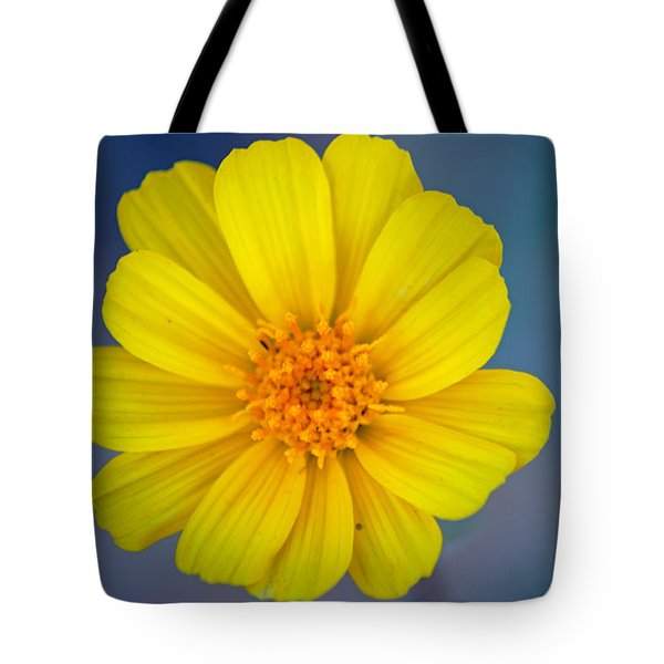 Death Valley Superbloom 403 Tote Bag