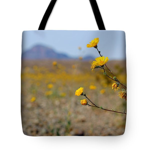 Death Valley Superbloom 501 Tote Bag by Daniel Woodrum
