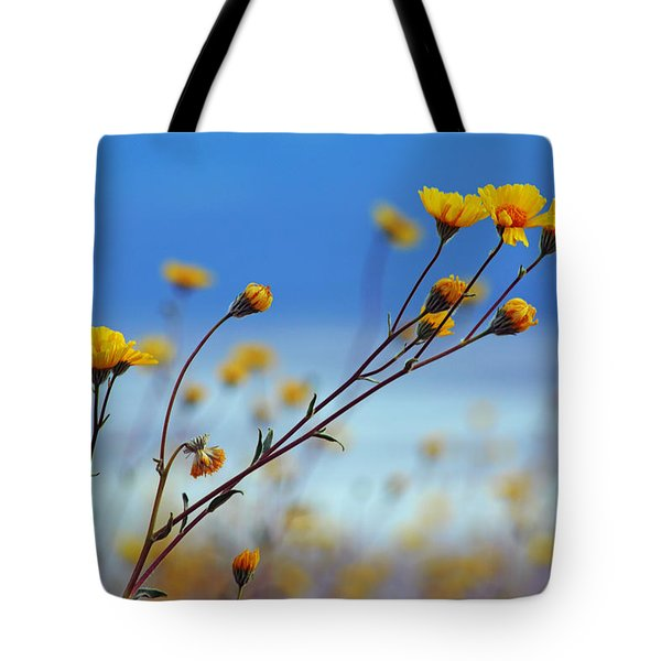 Death Valley Superbloom 502 Tote Bag by Daniel Woodrum