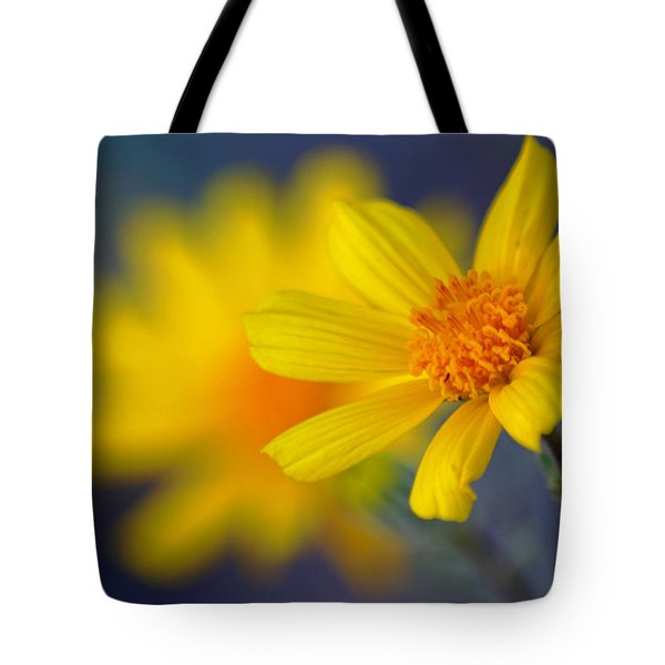 Death Valley Superbloom 503 Tote Bag by Daniel Woodrum
