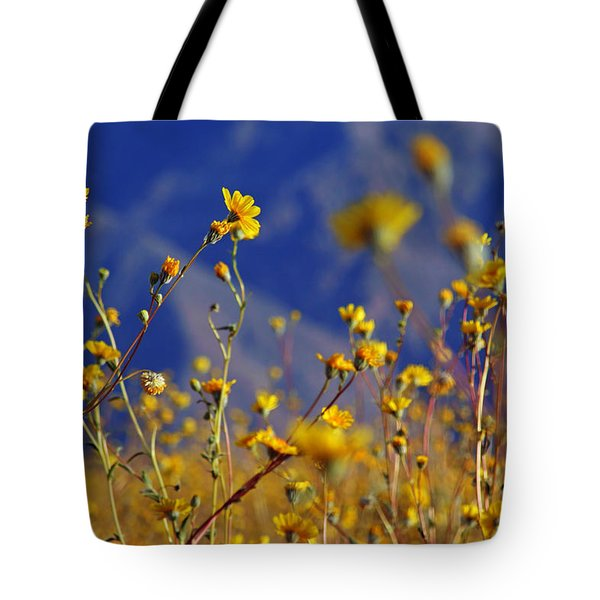 Death Valley Superbloom 505 Tote Bag by Daniel Woodrum