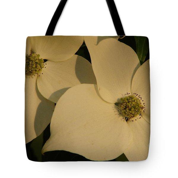 Deborah Tote Bag by Priscilla Richardson