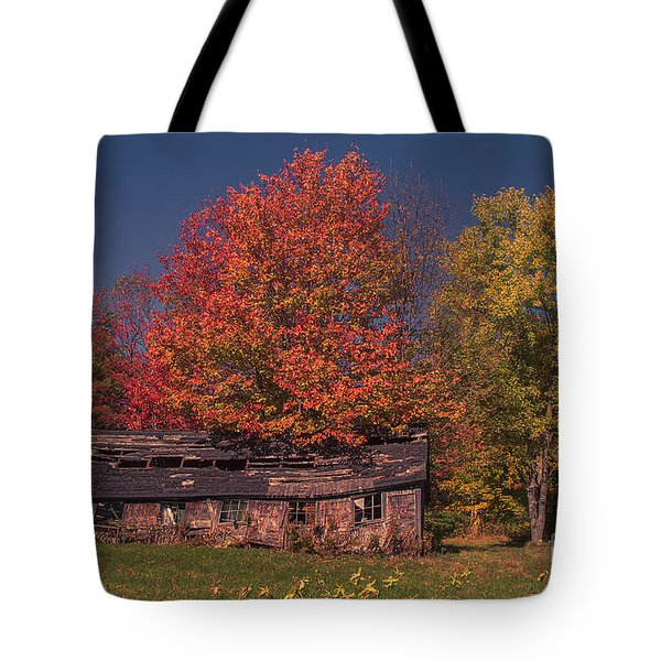 Decaying Building Tote Bag