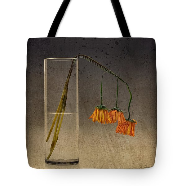 Tote Bag featuring the photograph Decaying by Joe Bonita