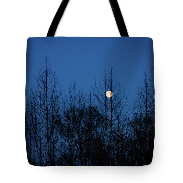 Tote Bag featuring the photograph December Moon by Jeff Phillippi
