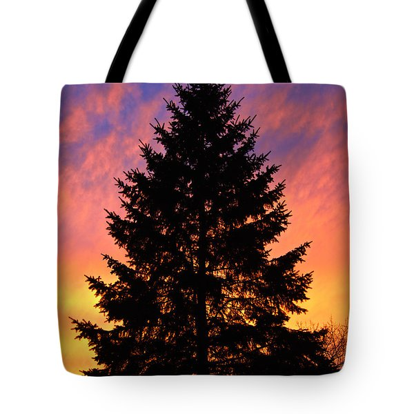 Tote Bag featuring the photograph December Sunset by Mark Miller