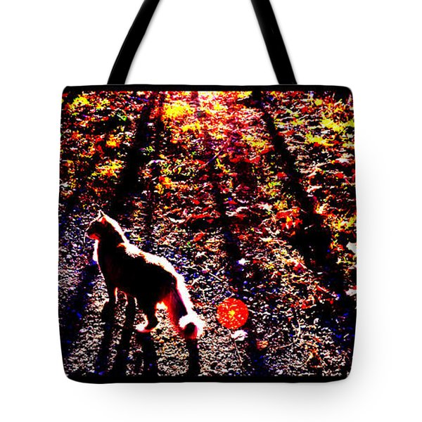 December Walk In The Blue Ridge Tote Bag