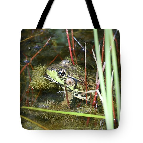 Tote Bag featuring the photograph Decked Out For Christmas by Sally Sperry