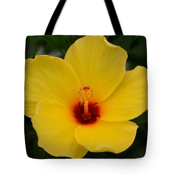 Decorative Floral Photo A9416 Tote Bag