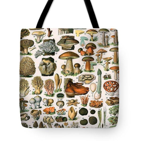 Decorative Print Of Champignons By Demoulin Tote Bag