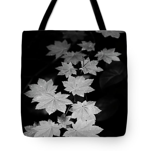 Deep Forest Maple Tote Bag
