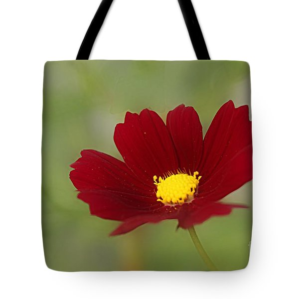 Deep In Red Tote Bag