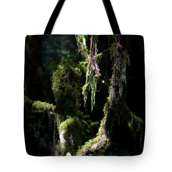 Tote Bag featuring the photograph Deep In The Forest by Lori Seaman