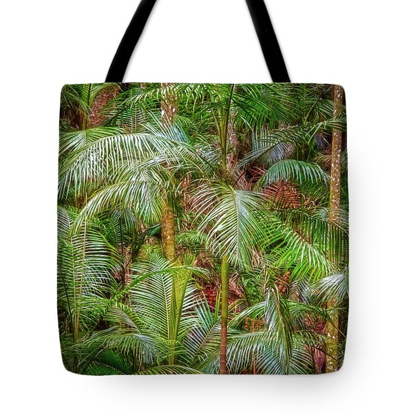 Tote Bag featuring the photograph Deep In The Forest, Tamborine Mountain by Dave Catley