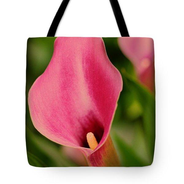 Deep Pink Tote Bag by Kathleen Struckle