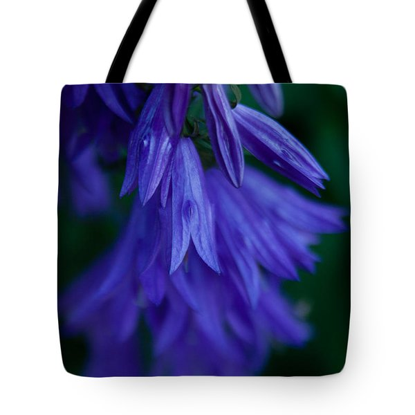 Tote Bag featuring the photograph Deep Purple by Erin Kohlenberg