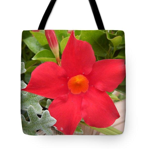 Mandevilla Deep Red Flower Tote Bag
