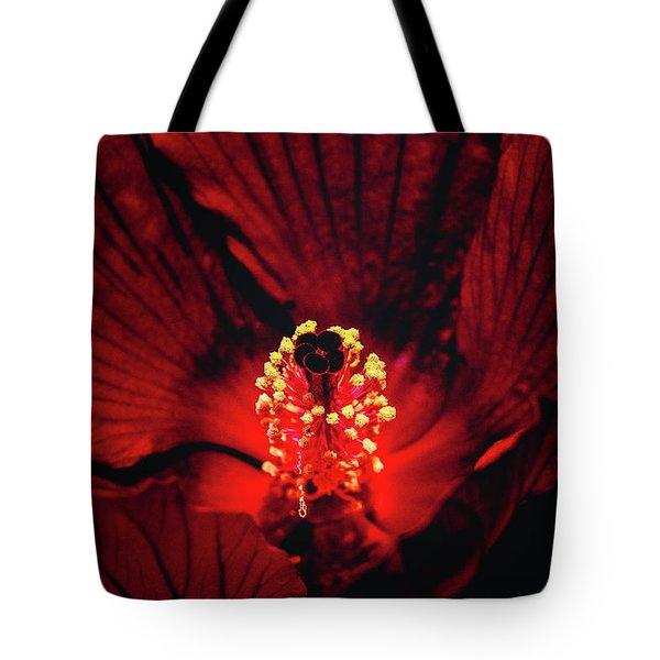 Deep Red Tote Bag by Jae Mishra