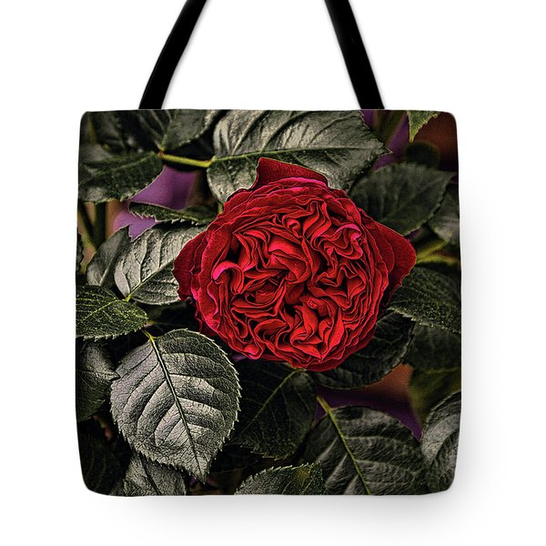 Tote Bag featuring the photograph Deep Red Rose by Elaine Teague