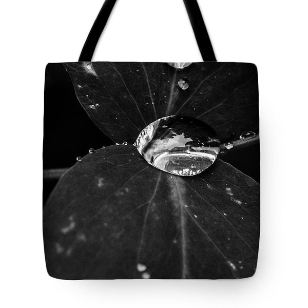 Tote Bag featuring the photograph Deep Refraction Between Leaves by Darcy Michaelchuk