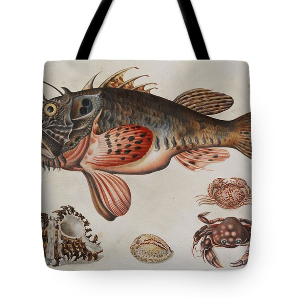 Deep-sea Fish, Crabs And Sea Snails Tote Bag