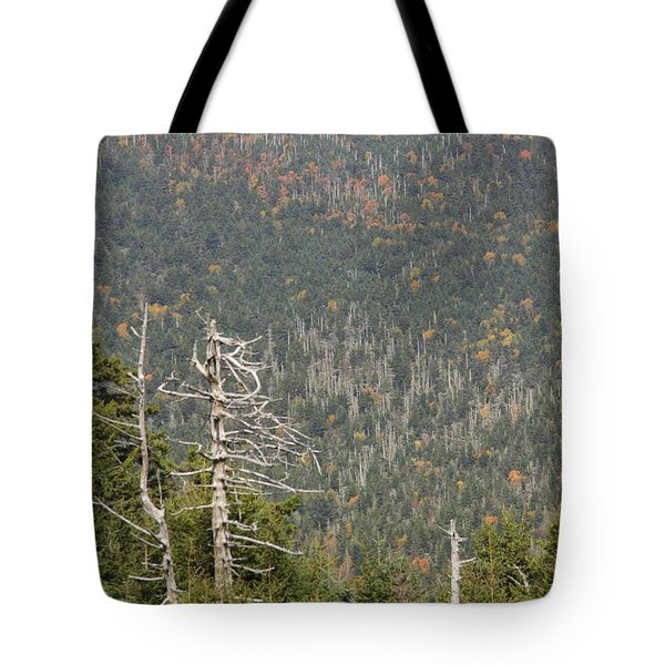 Deeper Into Forest Tote Bag