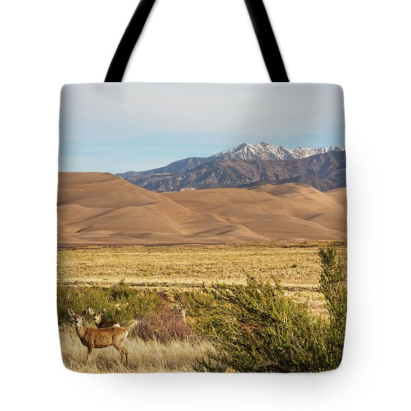Tote Bag featuring the photograph Deer And The Colorado Sand Dunes by James BO Insogna
