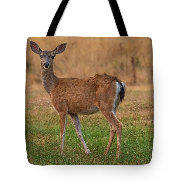 Deer At Sunset Tote Bag