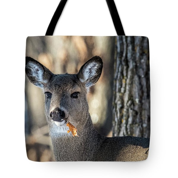 Tote Bag featuring the photograph Deer At The Salad Bar by Paul Freidlund