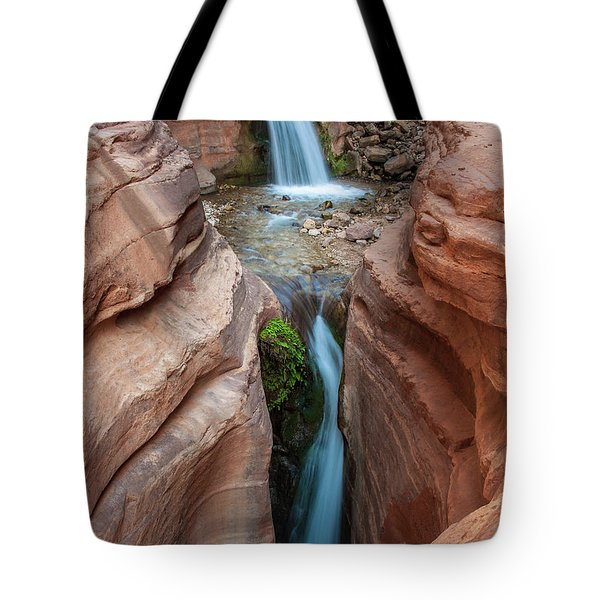 Deer Creek Double Waterfall Tote Bag by Britt Runyon