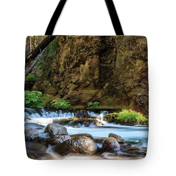 Deer Creek Tote Bag