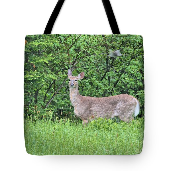 Deer Tote Bag by Debbie Stahre