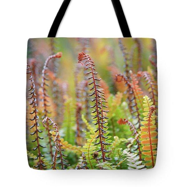 Blechnum Penna-marina Tote Bag