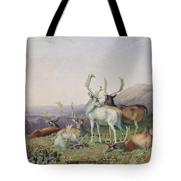 Deer In A Landscape Tote Bag