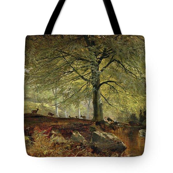 Deer In A Wood Tote Bag by Joseph Adam