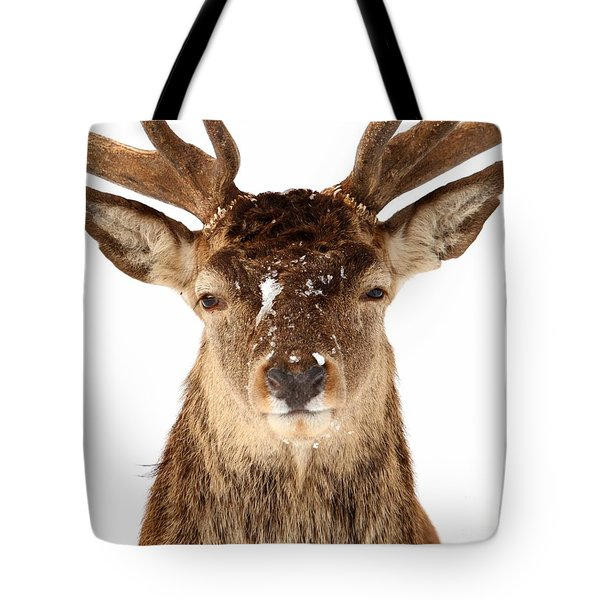 Deer In Headlights Tote Bag