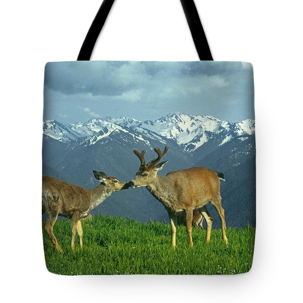 Ma-181-deer In Love  Tote Bag