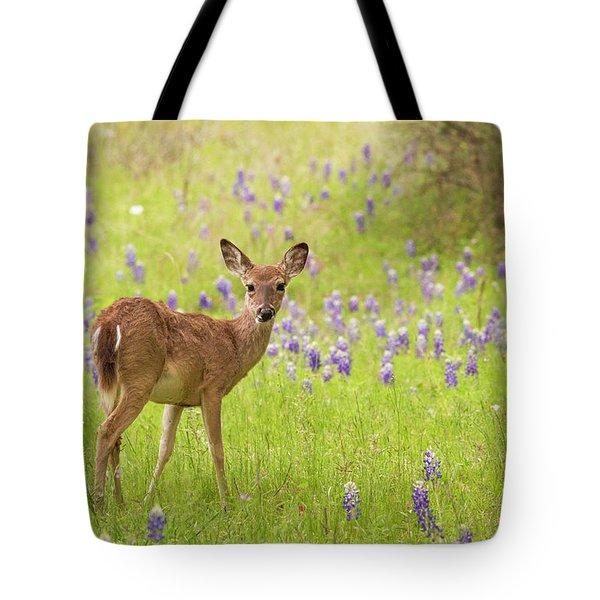 Deer In The Bluebonnets Tote Bag