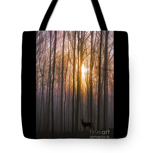Deer In The Forest At Sunrise Tote Bag