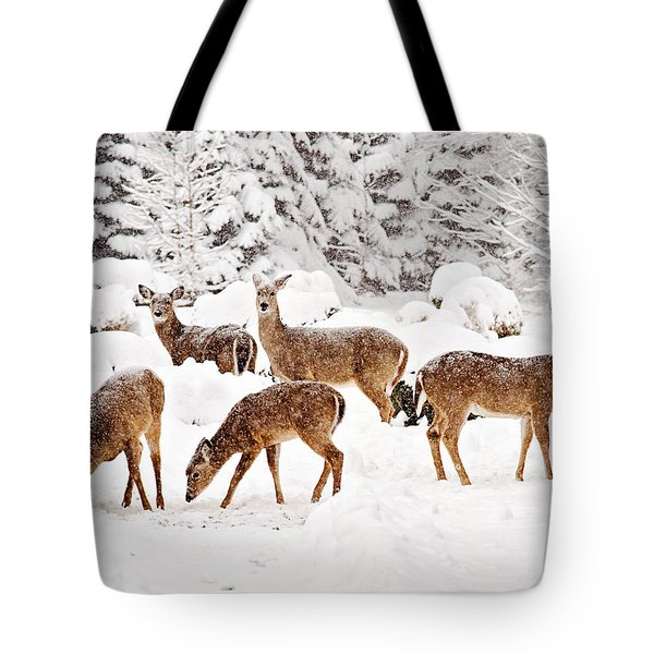 Tote Bag featuring the photograph Deer In The Snow 2 by Angel Cher